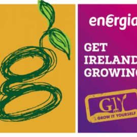 Energia Grow It Yourself Fund