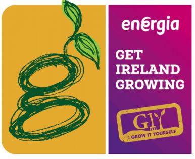 Energia Get Ireland Growing Fund