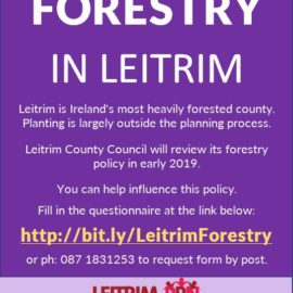 Forestry in Leitrim Questions Poster