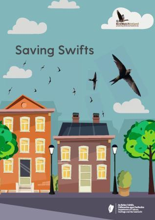 Saving Swifts – A Guide for Communities