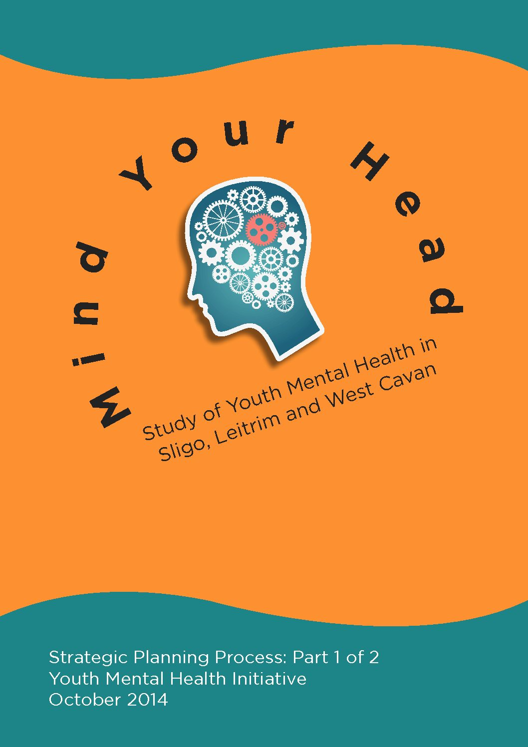 'Mind Your Head' study of young peoples' mental health