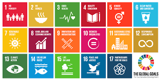Sustainable Development Goals Ireland