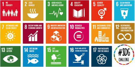 Sustainable Development Goals Advocate Programme
